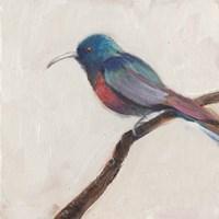 Bird Profile I Framed Print