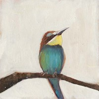 Bird Profile II Framed Print