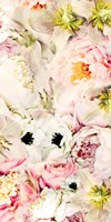Bouquet Fluffy I Fine Art Print