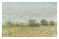 Spring Field II Framed Print