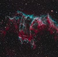 NGC 6995, the Bat Nebula Fine Art Print