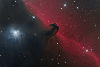 The Horsehead Nebula in the Constellation Orion Fine Art Print