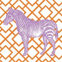 Bright Menagerie Zebra Framed Print