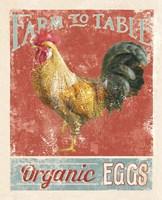 Farm Nostalgia V Framed Print