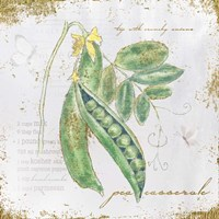 Garden Treasures X Fine Art Print