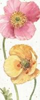 Spring Softies IV Framed Print