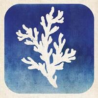 Watermark Coral Framed Print
