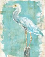 Coastal Egret II Framed Print