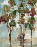 Serene Forest II Framed Print