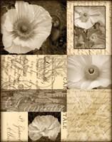 Flora Carte Postale I Fine Art Print