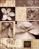 Flora Carte Postale II Fine Art Print