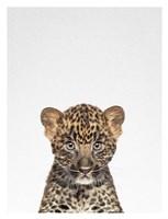 Leopard Fine Art Print