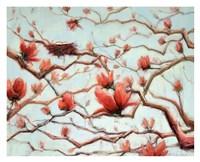 Possibilities in Full Bloom Fine Art Print