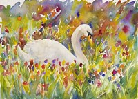Colorful Swan Fine Art Print