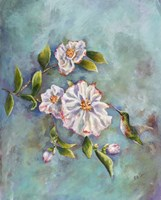 Hummingbird with Camellias Fine Art Print