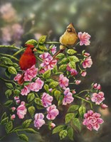 Cardinals with Roses Fine Art Print
