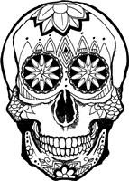 Skull 4 Fine Art Print