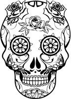 Skull 22 Fine Art Print