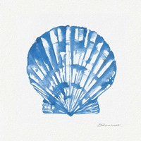 Shell In Blue Fine Art Print
