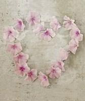 Roseheart Pink Fine Art Print