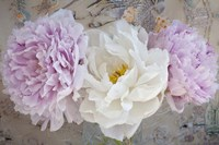 Romantic Flowers Fine Art Print