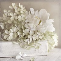 White Flower Book Fine Art Print