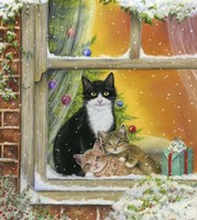 Christmas Window Fine Art Print