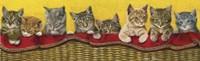Eight Kittens In Basket Fine Art Print