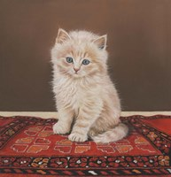 Fluffy Fine Art Print