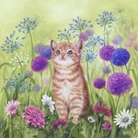 Ginger Kitten In Flowers Fine Art Print