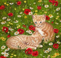 Ginger Kittens In Red Poppies Fine Art Print