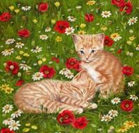 Ginger Kittens In Red Poppies Fine Art Print