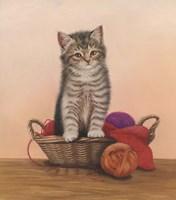Kitten And Wool Basket Fine Art Print