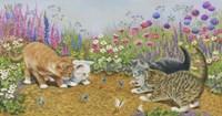 Kittens And Butterflies Fine Art Print