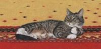 Sam On Patterned Rug Fine Art Print