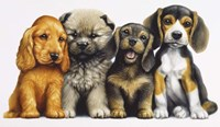 Young Dogs Fine Art Print