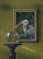 Heron And Goldfish Fine Art Print