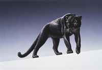 Black Panther Fine Art Print