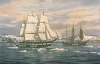 The Whaling Station Fine Art Print