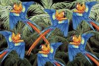 Palm Parrot Fine Art Print