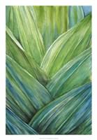 Tropical Crop IV Fine Art Print