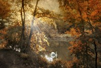 Autumn Afterglow Fine Art Print