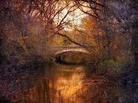 Autumn Finale Fine Art Print