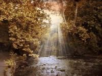 Autumn River Light Fine Art Print