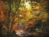 Autumn Stream Fine Art Print