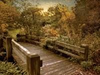 Splendor Bridge Fine Art Print