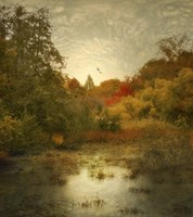Autumn Wetlands Fine Art Print