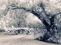Central Park Gothic Fine Art Print