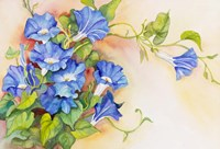 Morning Gloria Vine Stretching Fine Art Print