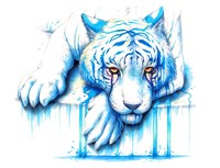 Blue Tears Fine Art Print
